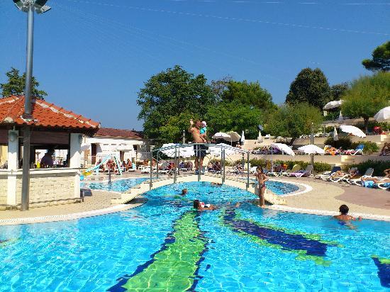 Hotel Pineta: Fantastic pool