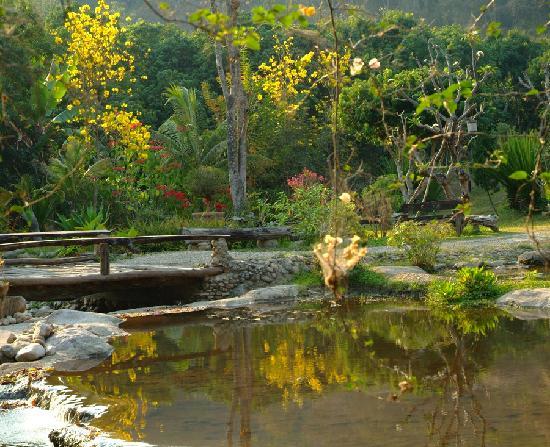 Tharnthong Lodges: magical gardens