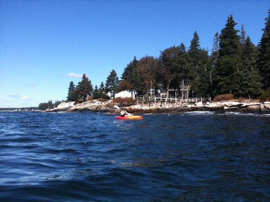 Spruce Point Inn Resort and Spa: Kayaking around Spruce Point