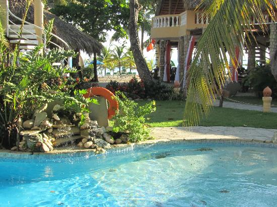 فندق فيلا تاينا: Pool Area