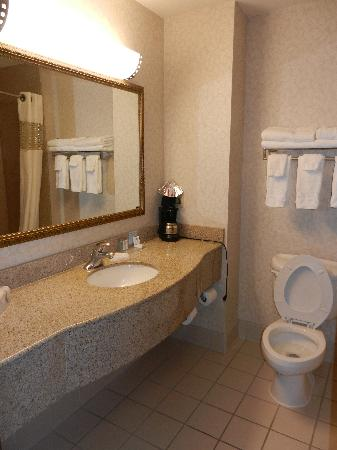 Hampton Inn Great Falls : wash room