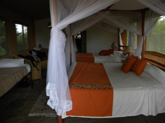 Oloshaiki Camp: interior tent view