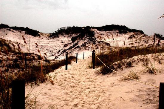 St. Joseph Peninsula State Park: Dunescape 2