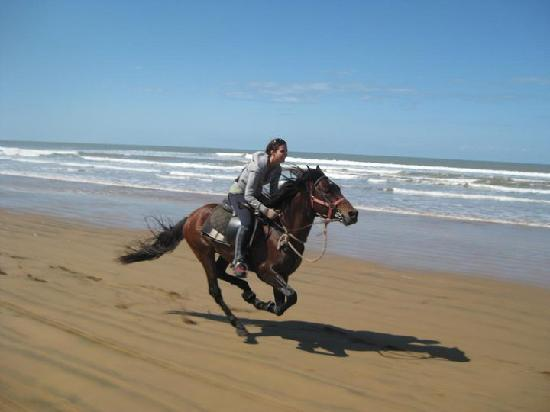 Ranch de Diabat : Gallop on the beach!