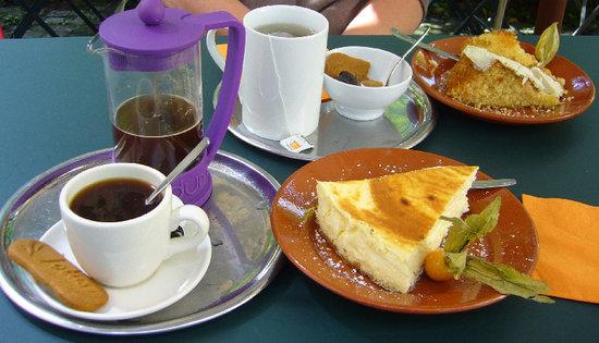 Uit steppe & oase theeten