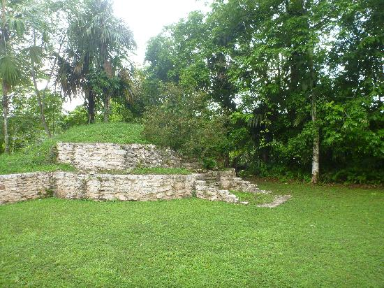 Pook's Hill Lodge: Mayan ruins located on the property