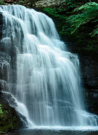 Bushkill Falls-another of many