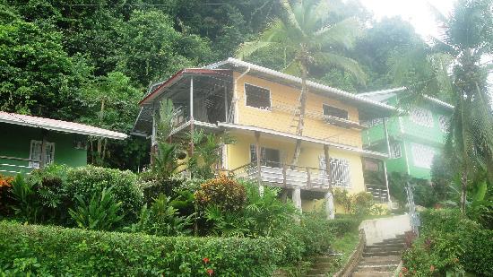 Golfito Marina Vista Villas: Tropical Colors, Tropical Gardens