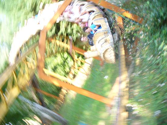Parc Asterix: One of the quieter fun for younger kids roller coasters