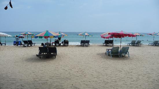 Aubreys: perfectly clean beach