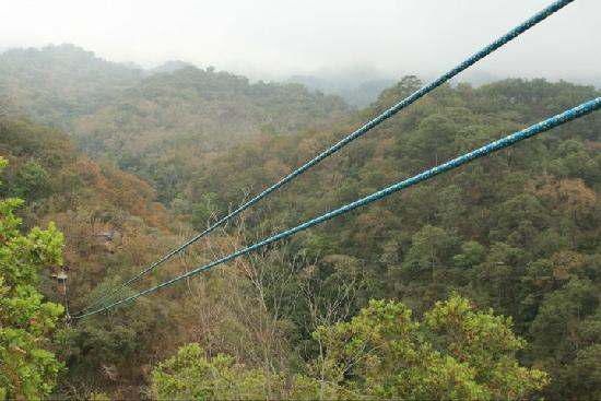 Vallarta Adventures: zipline
