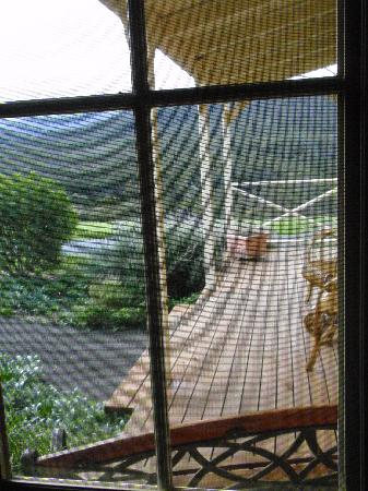 Margate Cottage Boutique Bed & Breakfast : The verandah showing the private drive