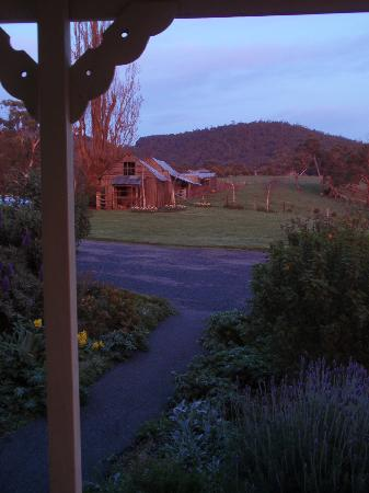 Margate Cottage Boutique Bed & Breakfast: The view from the verandah in the morning