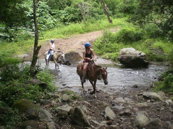 Playa Hermosa, Costa Rica: Rincon Viejo Tour - Horseback Ride to Zip Line Tour! Highly recommend.