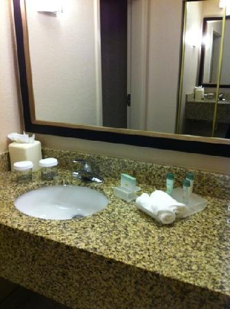 Homewood Suites Orlando-International Drive/Convention Center: nice vanity