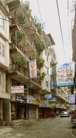 Holyland Guest House: Auf Straßenebene nur eine Türe zwischen 2 Geschäften, doch jedes Zimmer mit begrüntem Balkon
