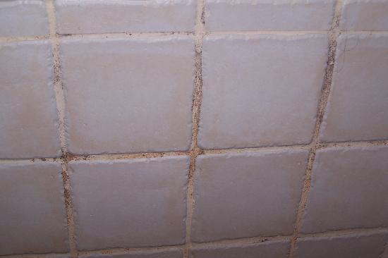 Grecotel Eva Palace: mouldy tiles