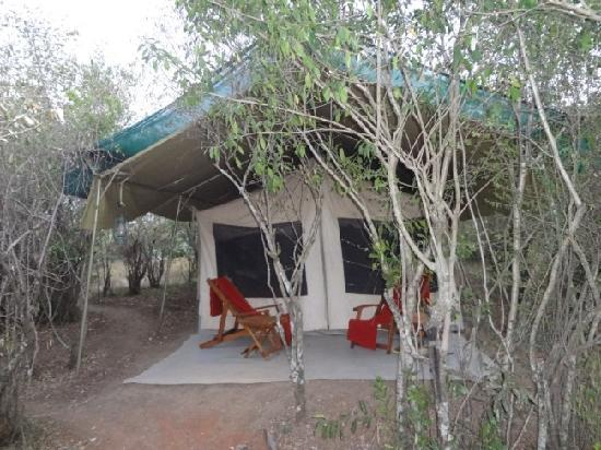 JK Mara Camp: JK Mara Tented Accomodation