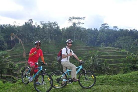 Bali Breeze Tours: On bike with the beautiful rice terraces