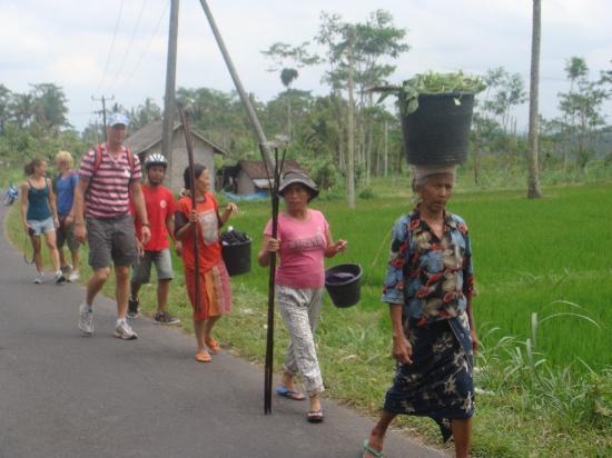 Bali Breeze Tours: We stop for see the local people after work in the rice fields