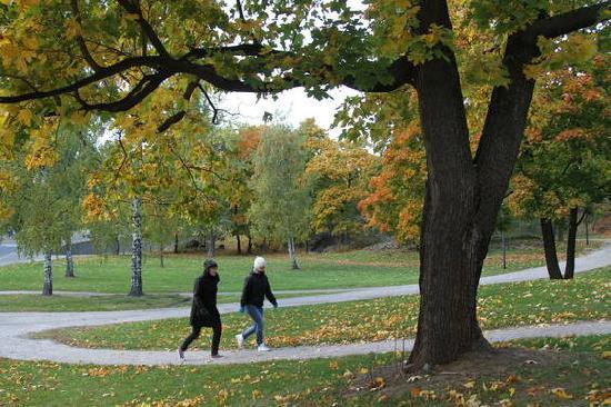 Helsinki, Finlandia: Autumn walk