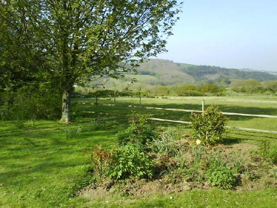 Treberthan B & B: Garden and fields.