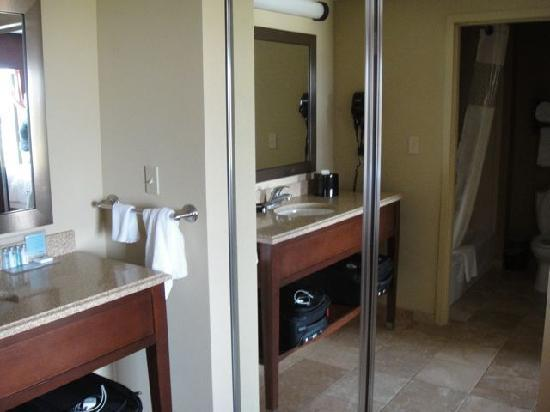 Hampton Inn & Suites St. Louis/South I-55: bath area
