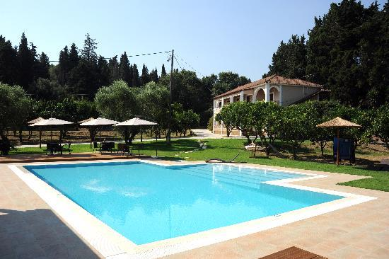 "Olive Grove Estate ""Eleas Gi"": pool"