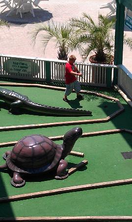 The Sandpiper Beacon Beach Resort: mini golf!