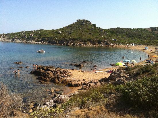 Residence Punta Falcone: La spiaggia