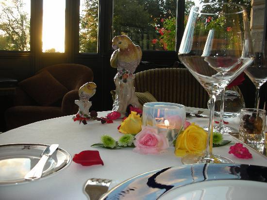 Chateau de Mirambeau: Partout des roses, c'est beau