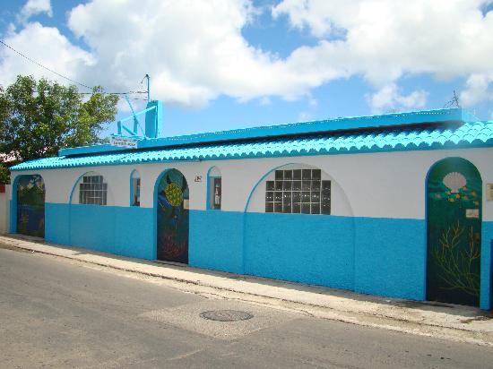 Casa Ensenada Waterfront Guesthouse: Entrance