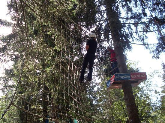 Forest Park: alcune attrazioni