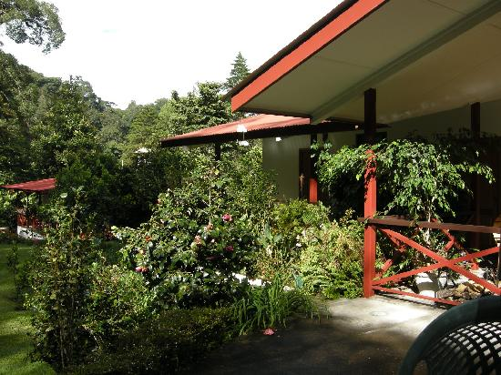Cielito Sur Bed and Breakfast: small garden shot