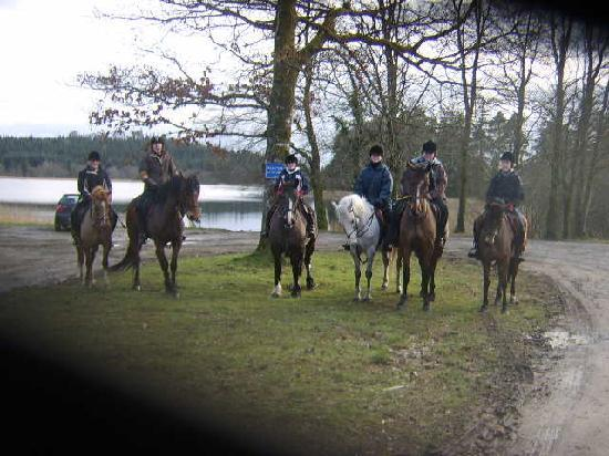 The Rock Equestrian Farm Bed & Breakfast : Riding in the forest