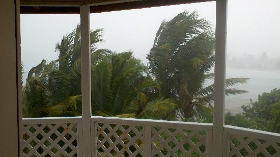 أراواك بيتش إن: Hurricane Irene
