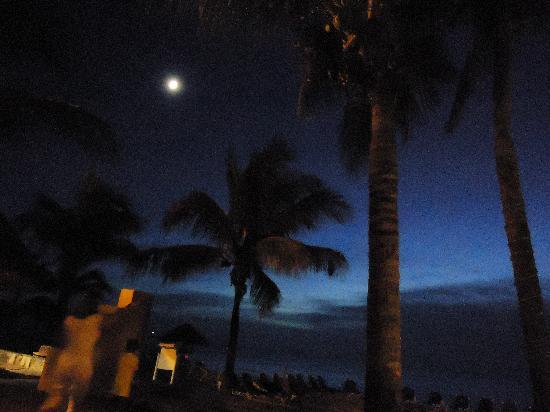 أليجرو كوزوميل ريزورت: Sunset night one