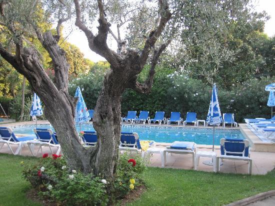 Le Petit Nice: La piscine