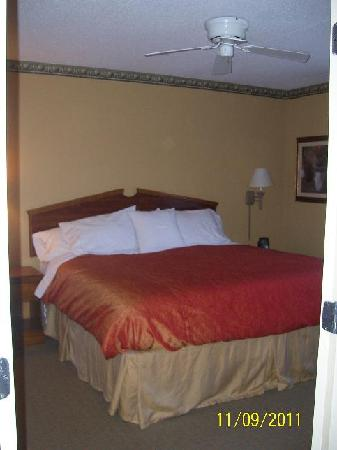 Homewood Suites by Hilton Boston-Peabody: King bedroom