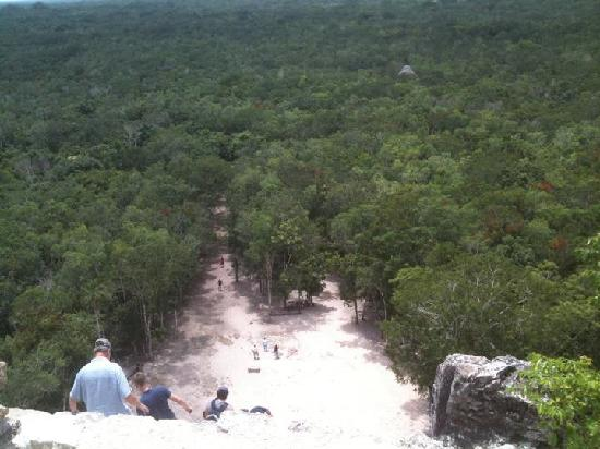 Charlie Drew Cancun Tours and Activities: View from top of Nohoch Mul