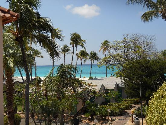 Divi Aruba All Inclusive: Vista Habitacion