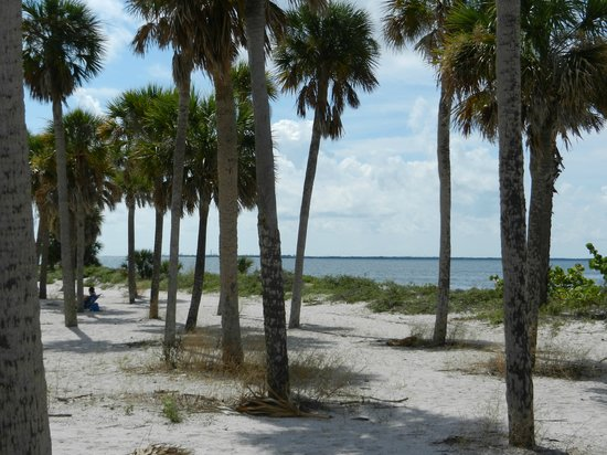 Tarpon Springs, FL: The Serenity of the Beach at Howard Park - a Great Stress Reliever!