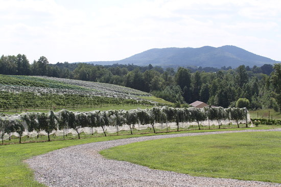 ‪Round Peak Vineyard‬