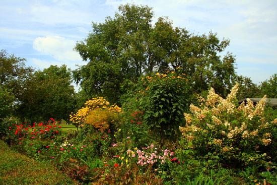 Garden  Gothmund