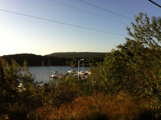Island View Hospitality Home : view from the trans Canada trail, Clarenville