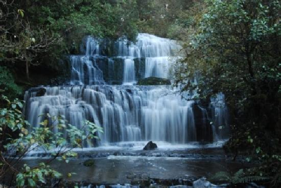 Split Level Backpacker & Accommodation : Purakaunui Falls - The Catlins