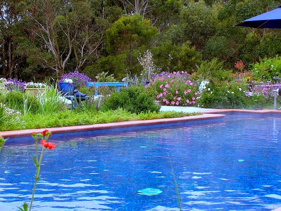 Lemonade Creek Cottages : Judged Lorne's best accommodation, best location