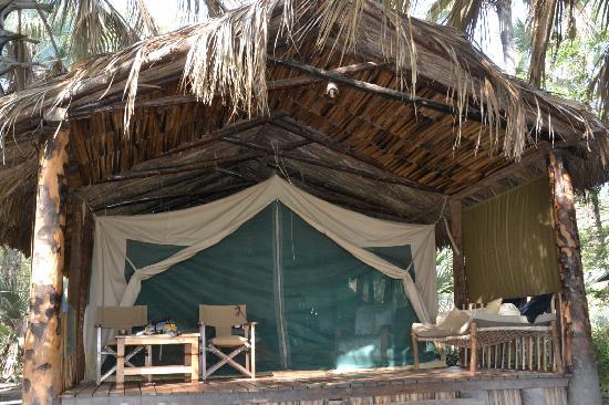 Kisima Ngeda Tented Camp: Gros dodo