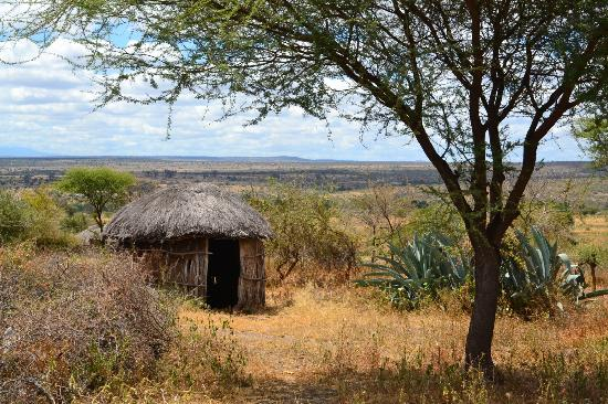 Manyara Ranch Conservancy: Hutte maasai voisin