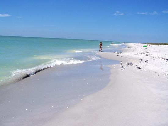 Bowman's Beach: the beach